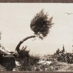 Enrique Masías, Giovane e arbusto, Arequipa, 1915 -1919